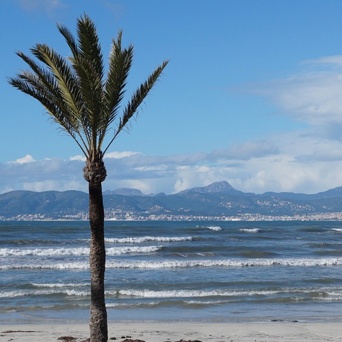 Palma, beach in Winter